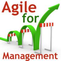 Training: AGILE FOR MANAGEMENT